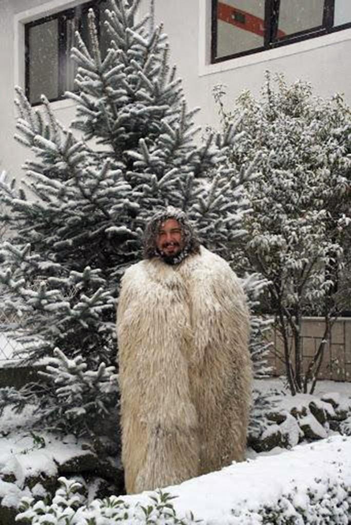 mihai iarna
