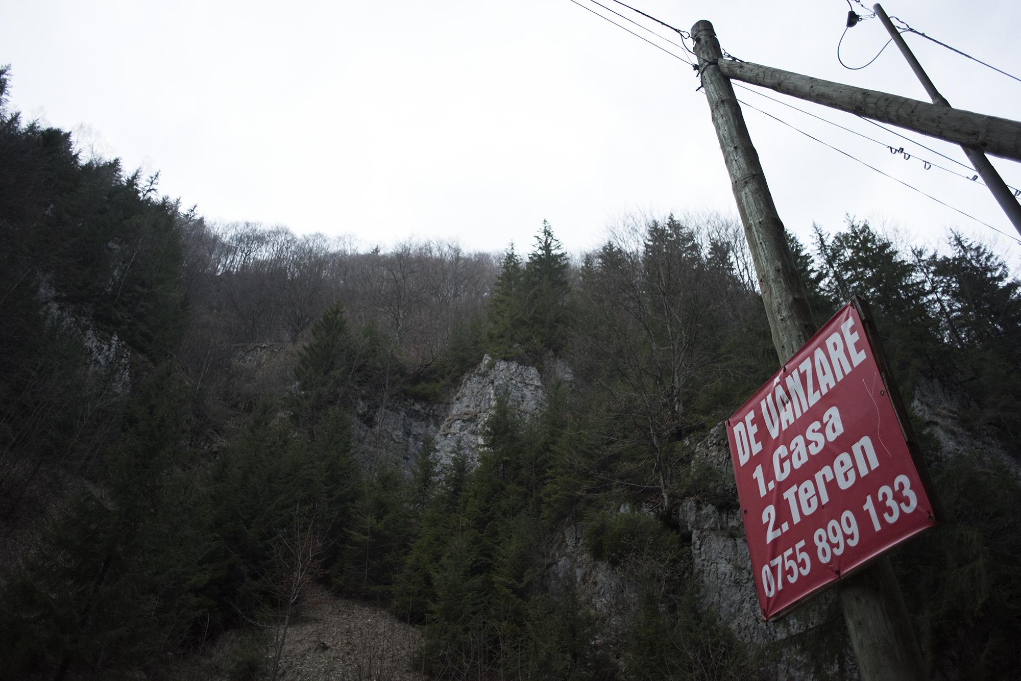 În zona Rucăr - Piatra Craiului, e o hemoragie de terenuri și păduri care se vând. Foto: Raul Ștef